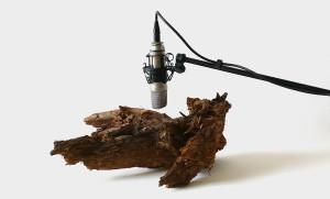Zimoun (Switzerland) 25 Woodworms, wood, microphone, sound system 2009