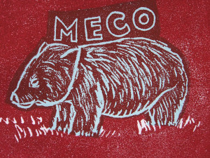 MECO by Kim Williams